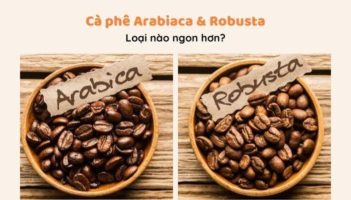 Cà phê Arabica và Robusta, loại nào ngon hơn?